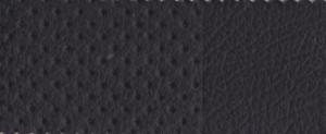 251 schwarz