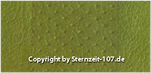 236 olive